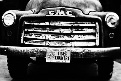 Tiger Country Poster by Scott Pellegrin