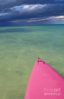 Tip Of Pink Kayak Poster by David Cornwell/First Light Pictures, Inc - Printscapes
