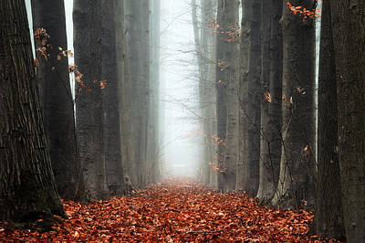 To Nowhere Poster by Martin Podt
