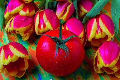 Tomato And Tulips Poster by Garry Gay