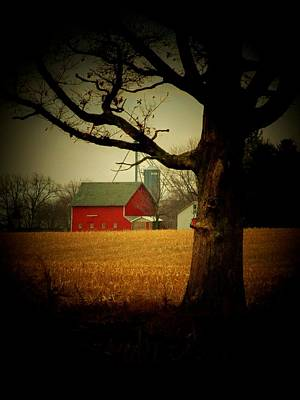 Tree And Barn Poster by Michael L Kimble