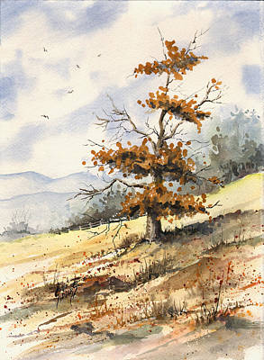 Tree On A Hillside Poster