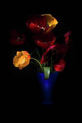 Tulips  Poster by Ivan Vukelic