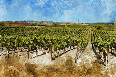 Vineyard In Napa Valley California During The Fall Poster by Brandon Bourdages