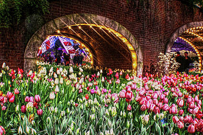 Welcoming Tulips Poster