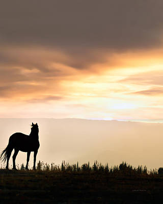 Wild Horse Sunset Poster by Leland D Howard