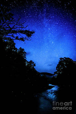 Williams River Under The Stars Poster