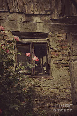 Window Poster by Mythja Photography