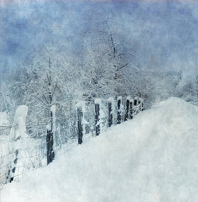 Poster featuring the photograph Winter by Angie Vogel