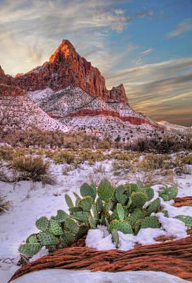 Winter In Zion National Park Utah Poster