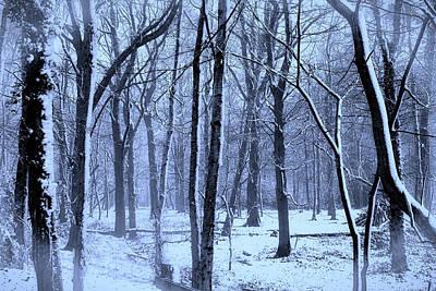 Winter Wonderland Poster by Martin Newman