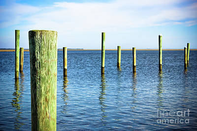 Poster featuring the photograph Wood Pilings by Colleen Kammerer