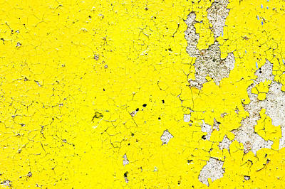 Yellow Paint Poster by Tom Gowanlock