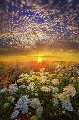 Your Whisper Tells A Secret Poster by Phil Koch