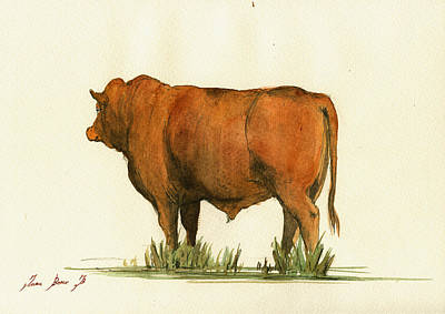 Zebu Cattle Art Painting Poster