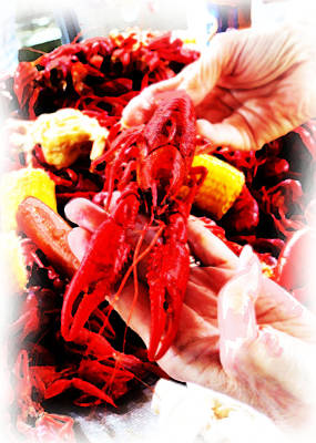 102715 Louisiana Lobster Poster