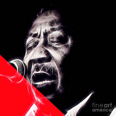 Muddy Waters Collection Poster