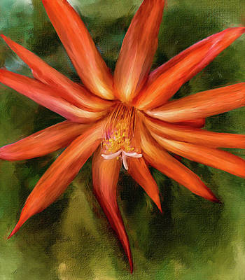 Nora Cactus Blossom Poster