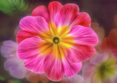 Pink Primrose #1 Poster