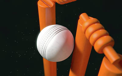 Cricket Ball Hitting Wickets Poster
