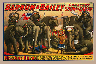 1915 Barnum And Bailey Circus Elephant Trainer Miss Amy Dupont Poster Poster