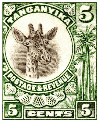 Poster featuring the painting 1922 East African Giraffe Stamp by Historic Image