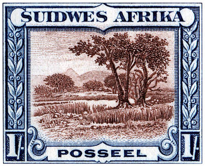 Poster featuring the painting 1931 South West African Landscape Stamp by Historic Image