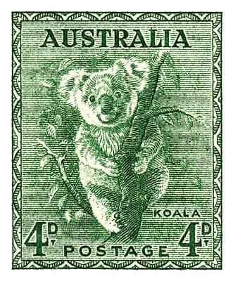 1940 Australia Koala Postage Stamp Poster by Retro Graphics