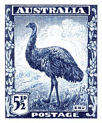 1942 Australia Emu Bird Postage Stamp Poster