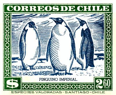1948 Chile Emperor Penguin Postage Stamp Poster by Retro Graphics
