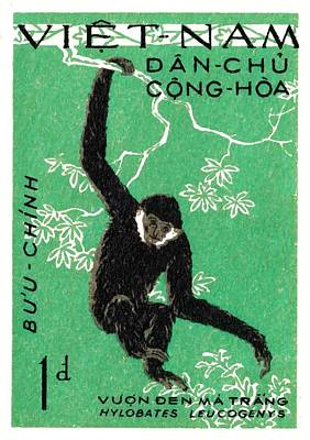 1961 Vietnam Gibbon Postage Stamp Poster by Retro Graphics