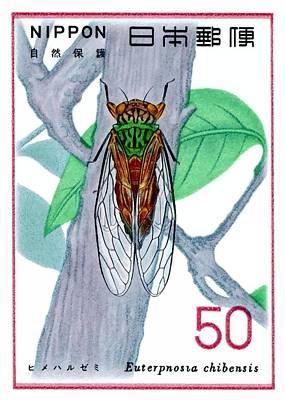 1977 Japan Cicada Postage Stamp Poster