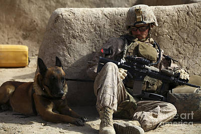 A Dog Handler And His Military Working Poster by Stocktrek Images