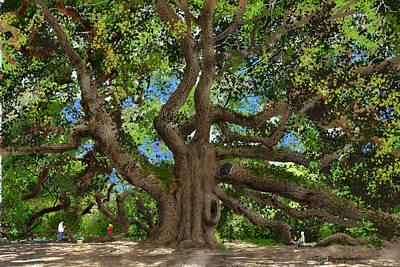 Angel Oak Poster by Jim Hubbard