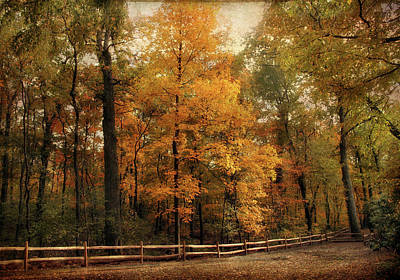 Autumn Trail Poster by Jessica Jenney
