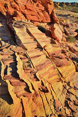 Poster featuring the photograph Bands Of Color In Valley Of Fire by Ray Mathis