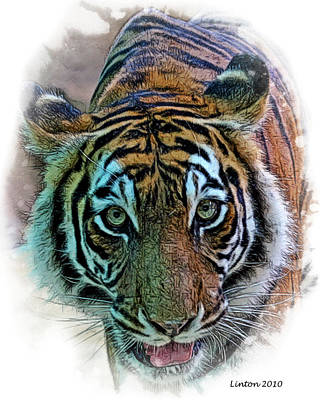 Bengal Tiger Poster by Larry Linton