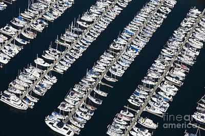 Boats In A Marina Poster