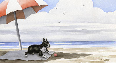 Boston Terrier At The Beach Poster by David Rogers