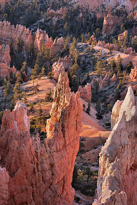 Poster featuring the photograph Bryce Canyon Sunrise by Stephen  Vecchiotti