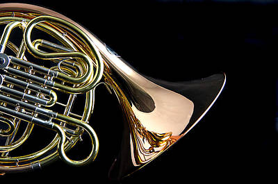 Color French Horn Poster