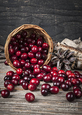 Cranberries In Basket Poster