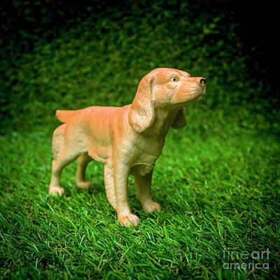 Dog Figurine Poster by Bernard Jaubert