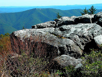 Dolly Sods Wilderness Poster by Thomas R Fletcher
