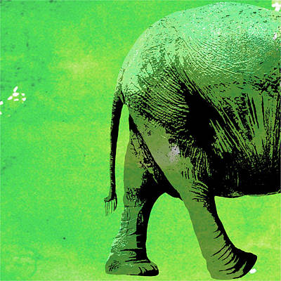 Elephant Animal Decorative Wall Poster 9 Poster