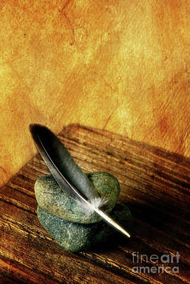 Feather With Stones Poster by HD Connelly