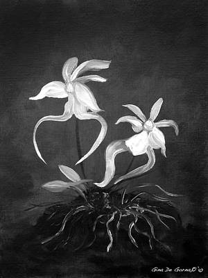 Ghost Orchids Poster