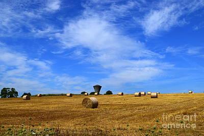 Harvest Time Poster