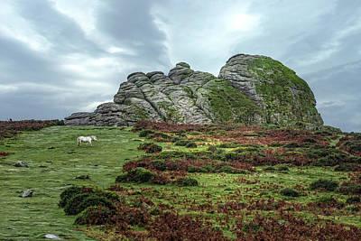Haytor Rocks - Dartmoor Poster
