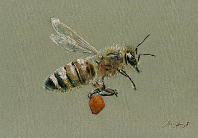 Honey Bee Watercolor Painting Poster